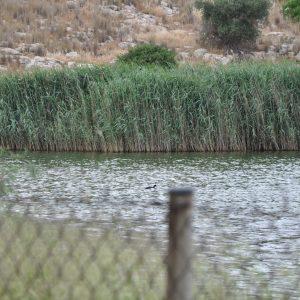 Lake Koumoundourou