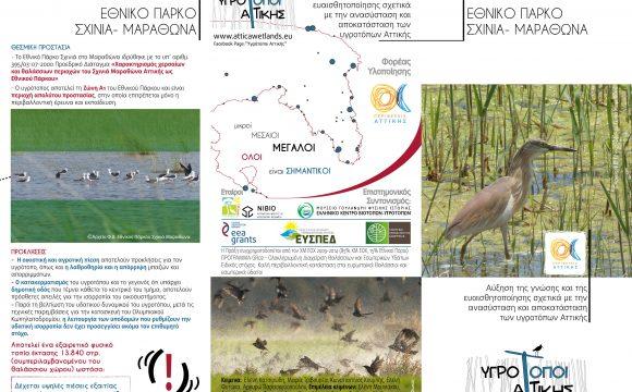 Leaflet – National Park Schinias Marathon